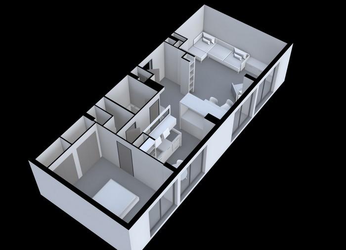 grenoble-renovation-projet